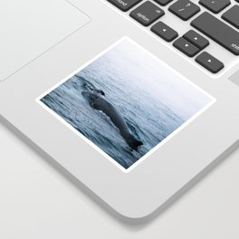 Humpback whale in the minimalist fog - photographing animals Sticker