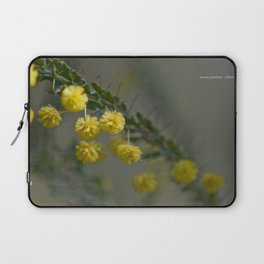 Acacia Paradoxa Laptop Sleeve