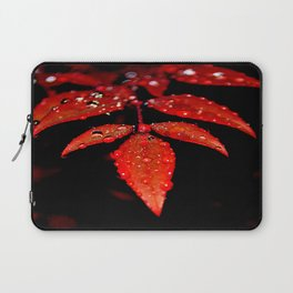 Leaves with Drops Laptop Sleeve
