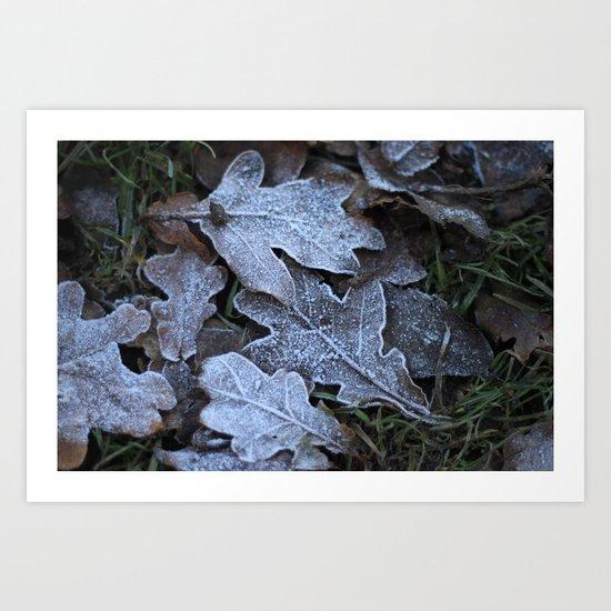 Frost Leaf Art Print