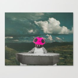 Mushroom Guy Canvas Print