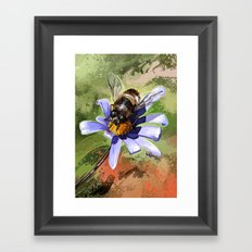Bee on flower 18 Framed Art Print