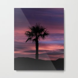 Palm Sunset - 8 Metal Print