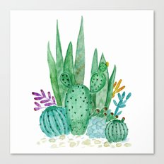 Cacti and succulents . Watercolor . Canvas Print