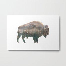Bison Metal Print