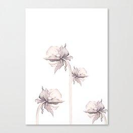 Four Buds Canvas Print