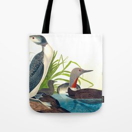 Red-Throated Diver Duck Tote Bag