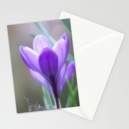Crocus Venus Stationery Cards