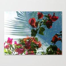 Palmvilla Canvas Print