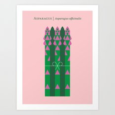 Vegetable: Asparagus Art Print
