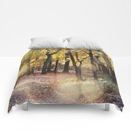 Autumn Secenery 25 Comforters