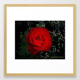 Red Rose Digital Framed Art Print
