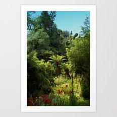 Heligan Gardens 1/4 Art Print