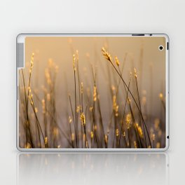 Tall Grass in Camargue Laptop & iPad Skin