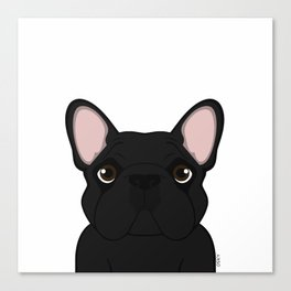 Frenchie - Black Brindle Canvas Print
