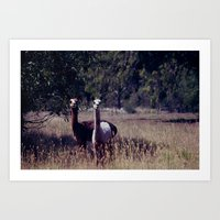 What are you looking at? Art Print
