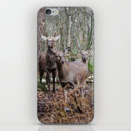 Noble family iPhone Skin