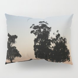 Eucalyptus trees at sunset Pillow Sham