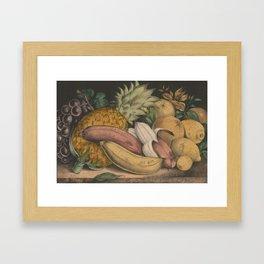 Vintage Illustration of Tropical Fruits (1871) Framed Art Print