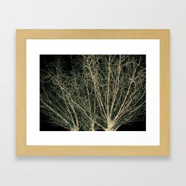 On a Willow's Wim Framed Art Print