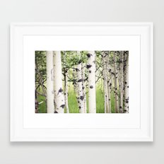 Aspen Eyes Framed Art Print