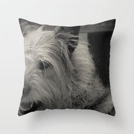 Glam Scout Throw Pillow