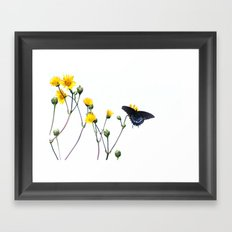 Butterfly Prairie Framed Art Print