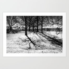 Cold Morning Shadows Art Print