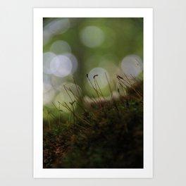 Abstract Nature I Art Print