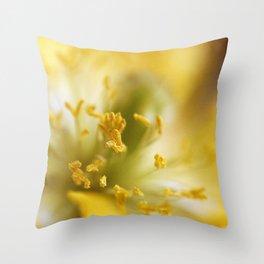 Inside The Poppy Throw Pillow