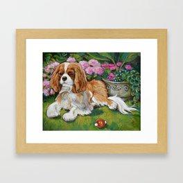 Cavalier King Charles Spaniel in the Garden Painting Framed Art Print