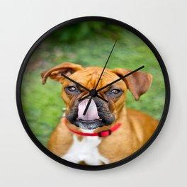 Boxer Lick Wall Clock