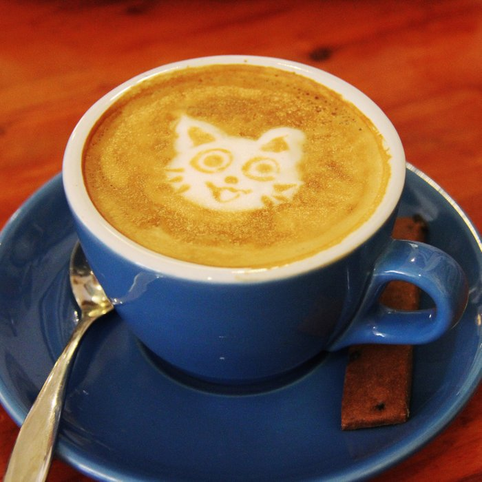 Coffee and Cats-A cat face in a coffee design Comforters