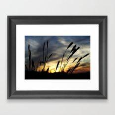 Blowin' in the wind Framed Art Print