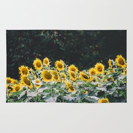 Sunflowers 7 Rug