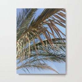 Palm Tree - Summer Holiday Photography Nature Sky Beach Metal Print