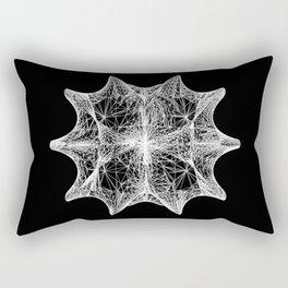 The Calabi-Yau Manifold Rectangular Pillow