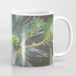 Pine Cone 4 Coffee Mug