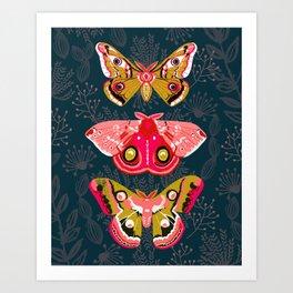Lepidoptery No. 4 by Andrea Lauren Art Print