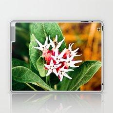 Pink Stars Laptop & iPad Skin