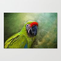 parrot Canvas Prints featuring parrot by lucyliu