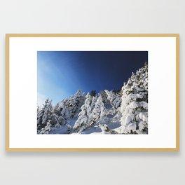 Bluebird Days Framed Art Print