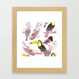 Large birds watercolor toucans, juncos, hoopoe and barn owl Framed Art Print