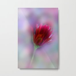 the beauty of a summerday -140- Metal Print