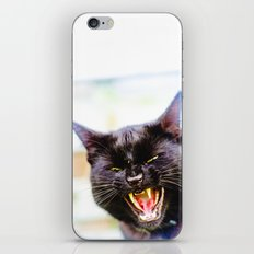 Angry black cat iPhone & iPod Skin