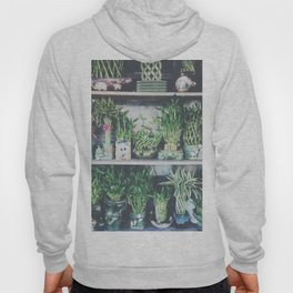 green bamboo plant in the vase pattern background Hoody