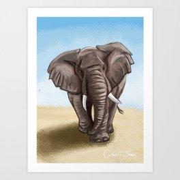 The Majestic Elephant Art Print