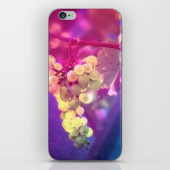 SUMMER GRAPES iPhone & iPod Skin