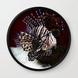 Devil Firefish Wall Clock