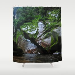 Peruvian Amazon III Shower Curtain